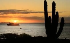 Baja California: A Remarkable Journey – March 2016