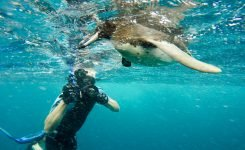 Galápagos Photo Expedition – 10 Days – Feb. 2017
